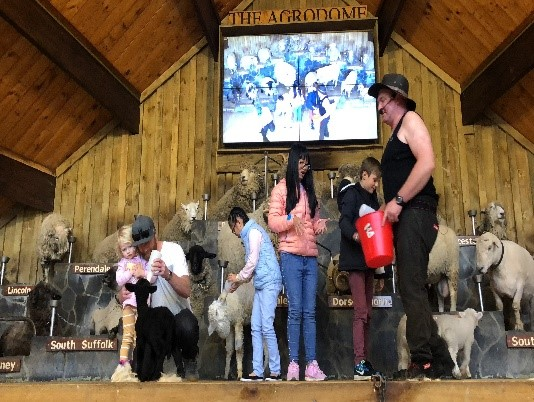 Agrodome