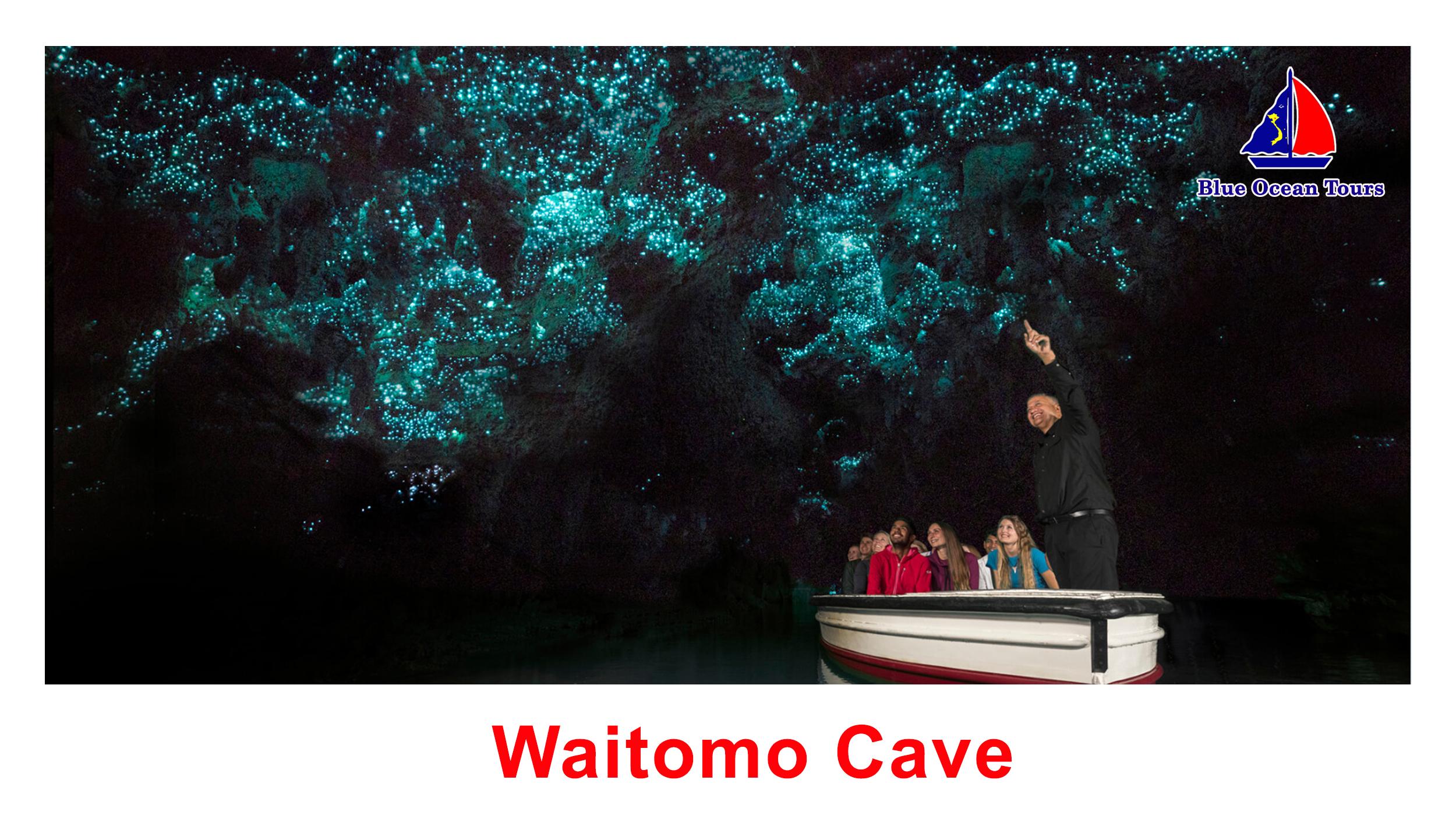 Động Waitomo - Động đom đóm