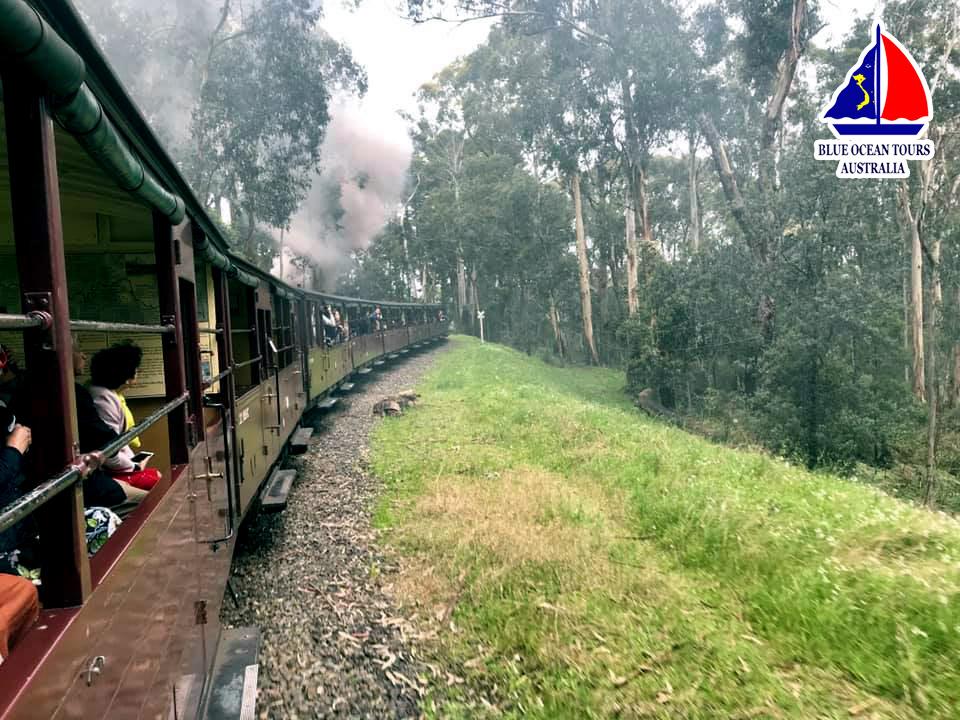 Tàu lửa hơi nước Puffing Billy được Blue Ocean Tours chụp vào tháng 9/2019
