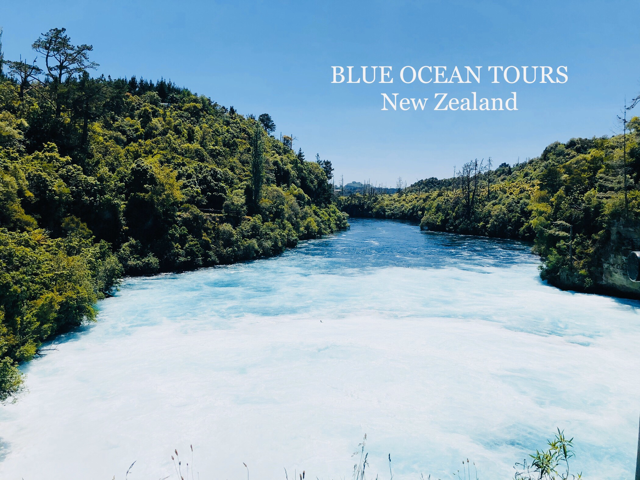 Du lịch New Zealand cùng Blue Ocean Tours
