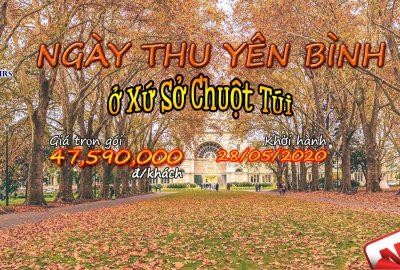 Banner Web Tour Mùa Thu T5