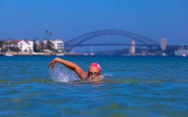 Cờ đỏ và vàng đánh dấu các khu vực an toàn nhất để bơi lội.