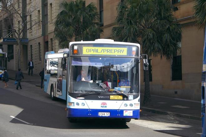 Thẻ Opal là một loại thẻ bắt buộc cho các phương tiện công cộng tại Sydney.