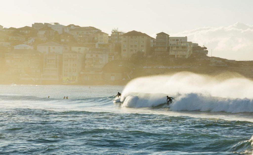 Chơi lướt sóng tại bãi biển Bondi